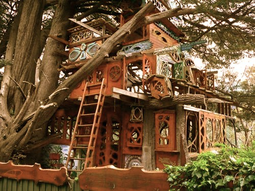 Tree Houses California Tree House Sonoma California