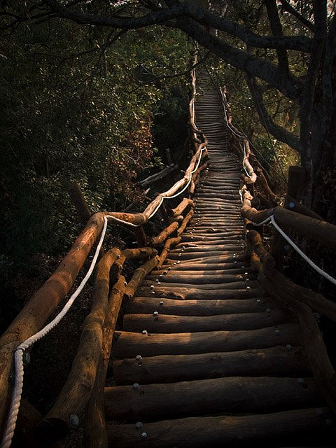 Wooden Meditation Path, Taiwan