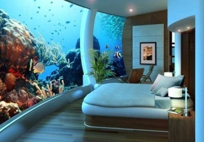Bedroom Aquarium, Seattle, Washington