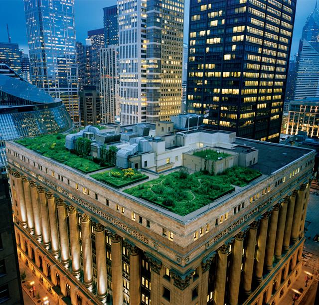Chicago City Hall Rooftop Garden, USA