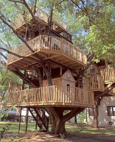 Tree House, United Kingdom