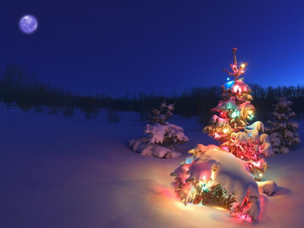 Christmas in Alberta, Canada