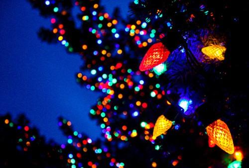 Christmas in Wilmette, Illinois