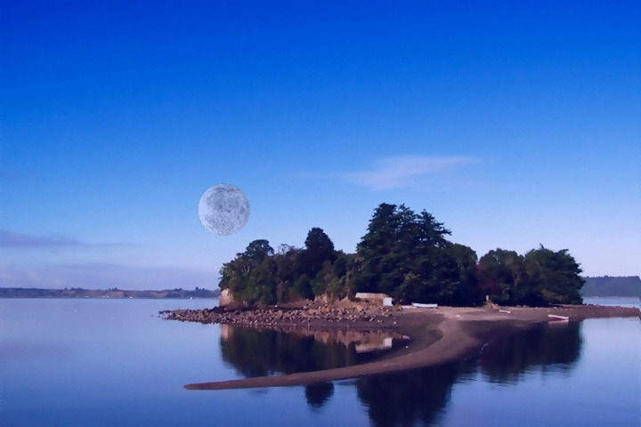 Isla De Los Curas, Chile