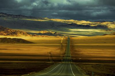 Panamerican highway