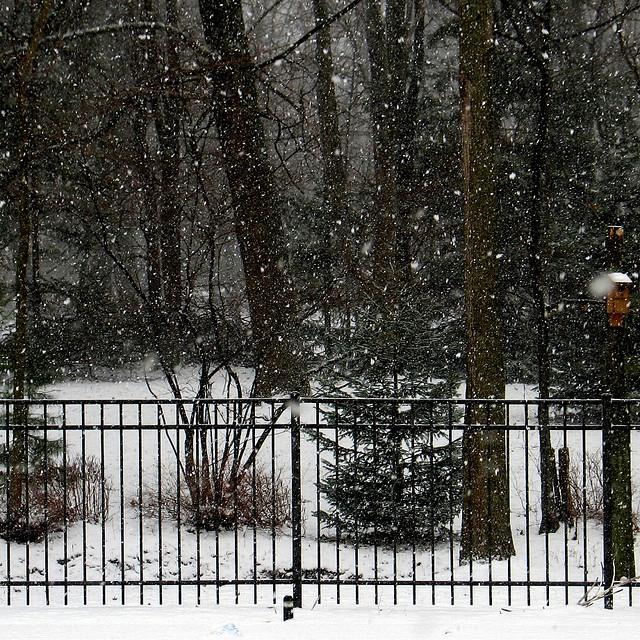 Snowing…