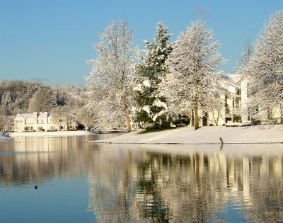 Winter in Kent, Washington, USA