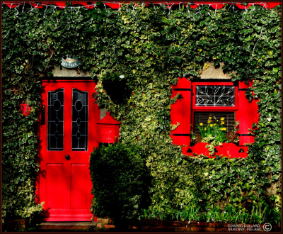 Irish cottage, Carlow, Ireland