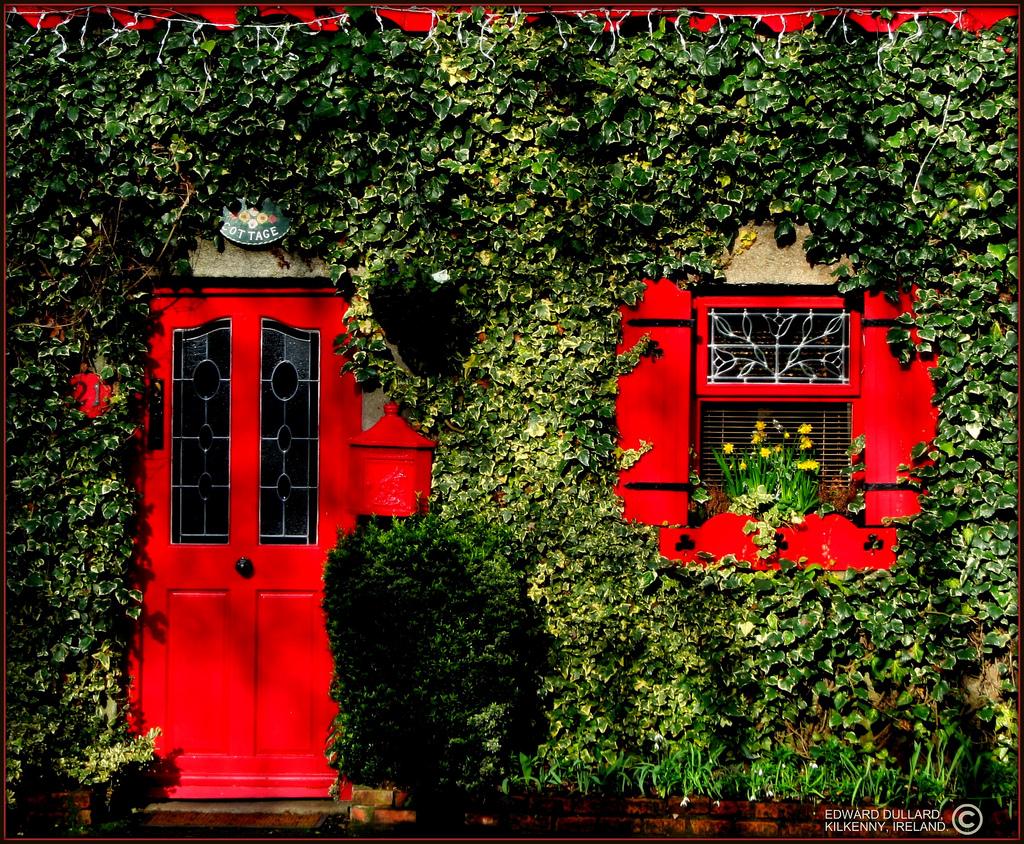 Irish cottages on pinterest irish cottage ireland and irish for The red cottage