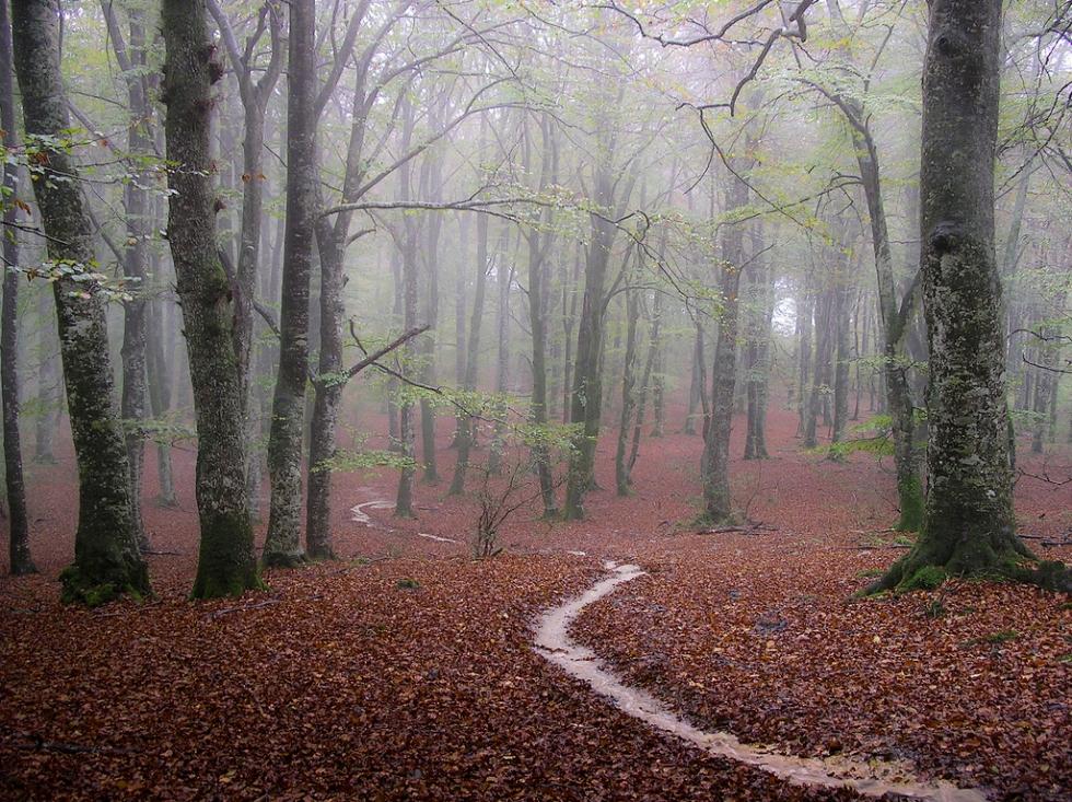 Izarra, Basque Country, Spain