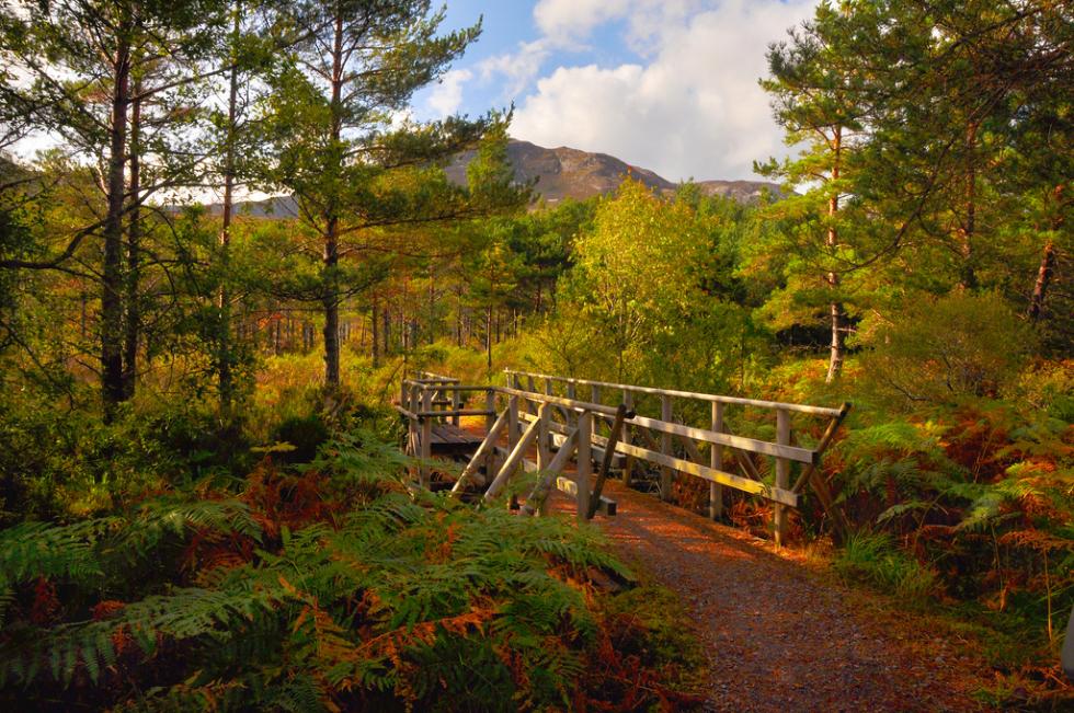 Kinlochewe, Scotland