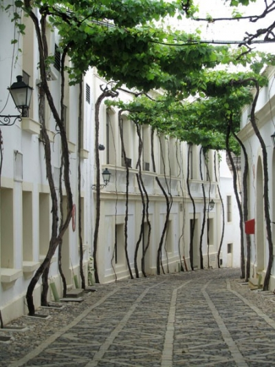 Street in Jerez, Spain