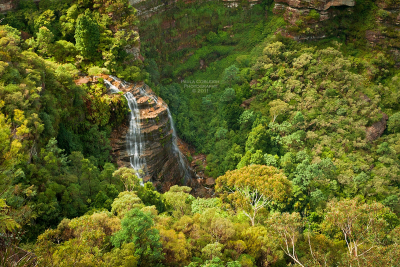 Upper Wentworth Falls, Blue Mountains, Australia