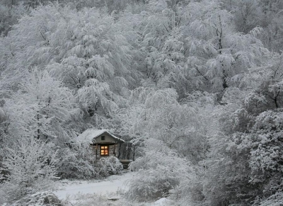 Winter fairytale
