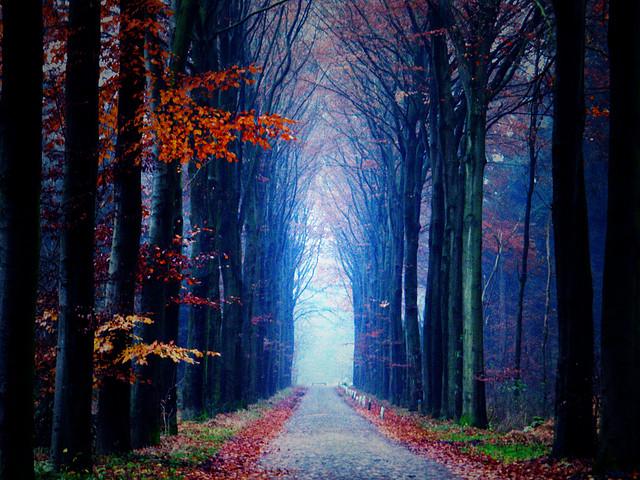 Drenthe, Netherlands