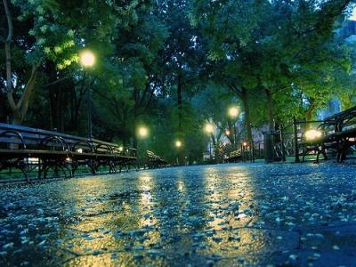 Spring rain, Paris, France
