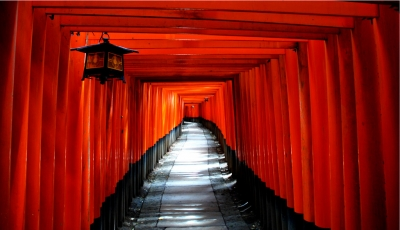 The Kyoto Torii tunnel, Japan