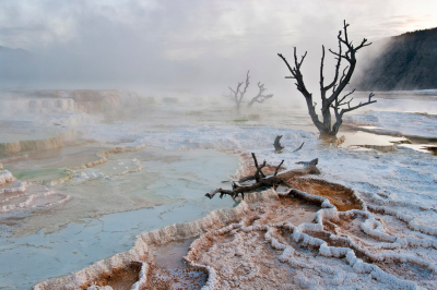 Mammoth Hot Springs, Yellowstone National Park, Wyoming, USA