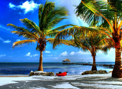 Kayak under palm, Belize