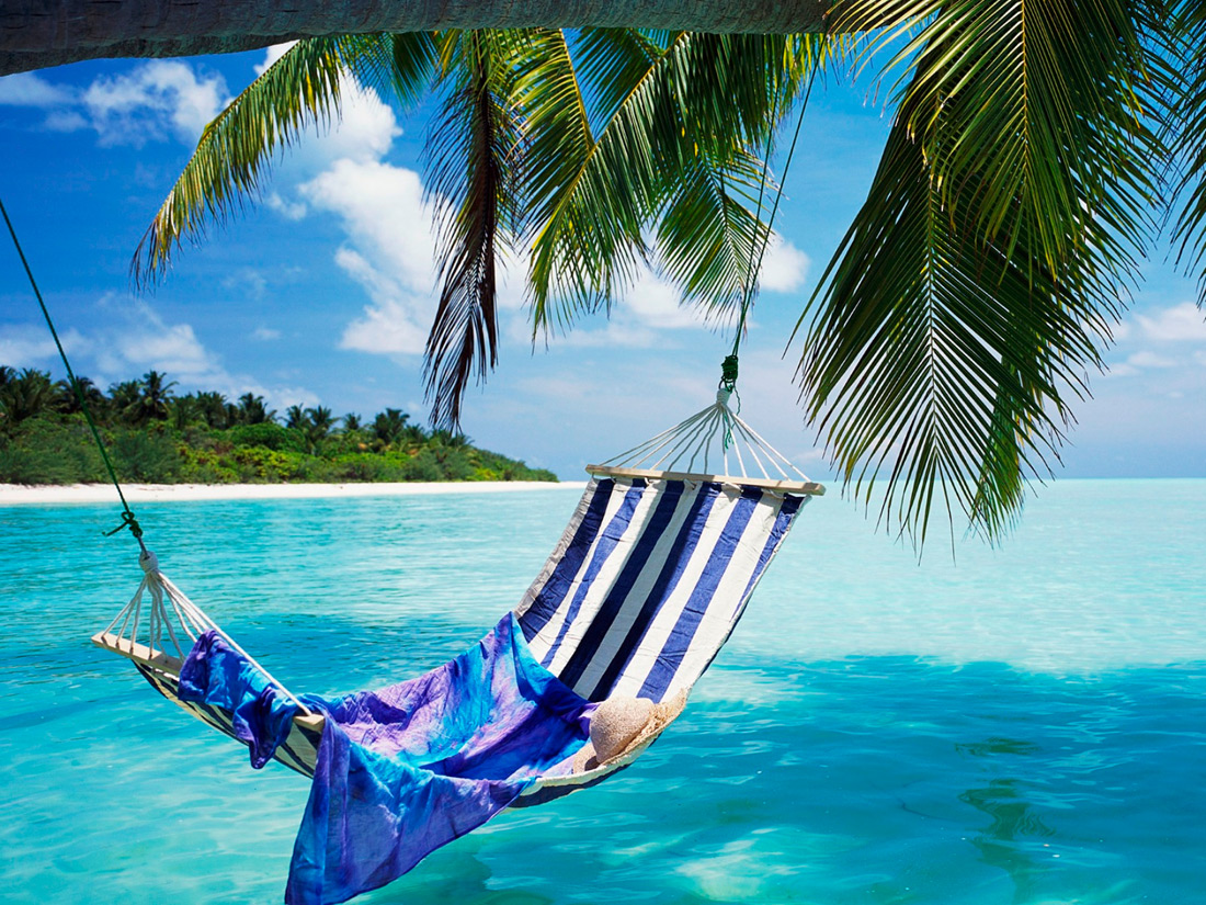 hammock on a beach in hawaii