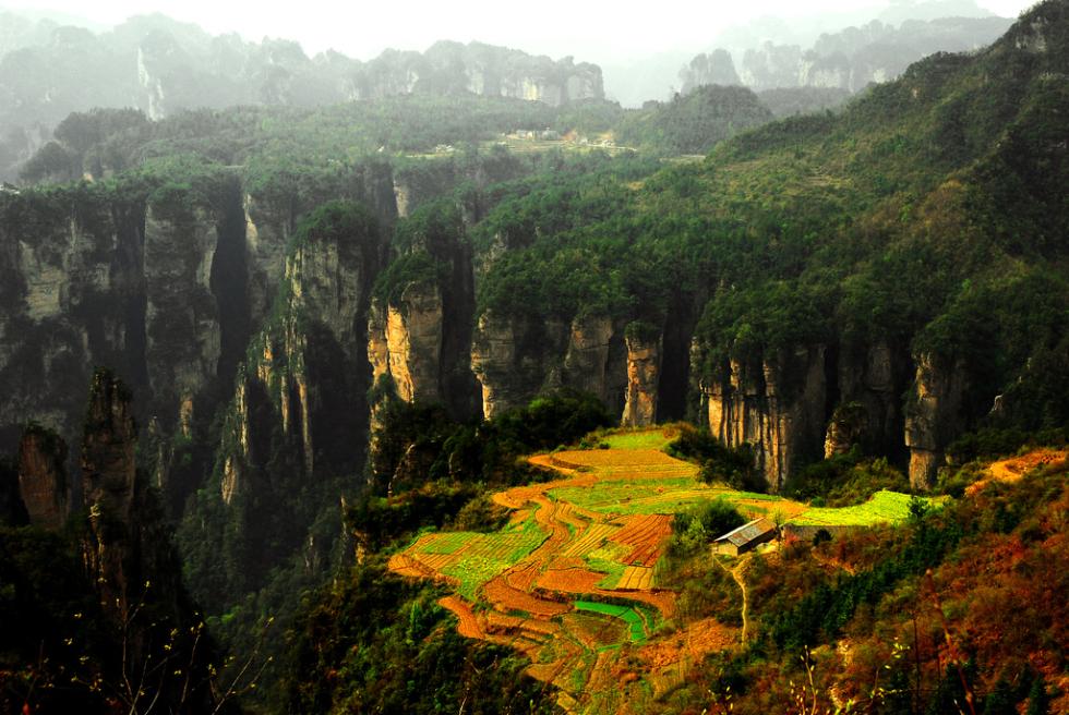 National Park of Zhang Jia Jie, Hunan, China