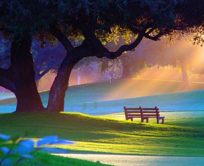 Summer Morning, Alpine Park, Rockford, Illinois