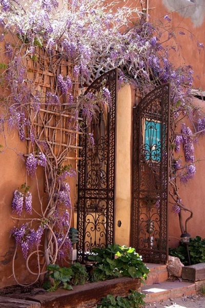 Wisteria Entryway, Isle of Crete, Greece