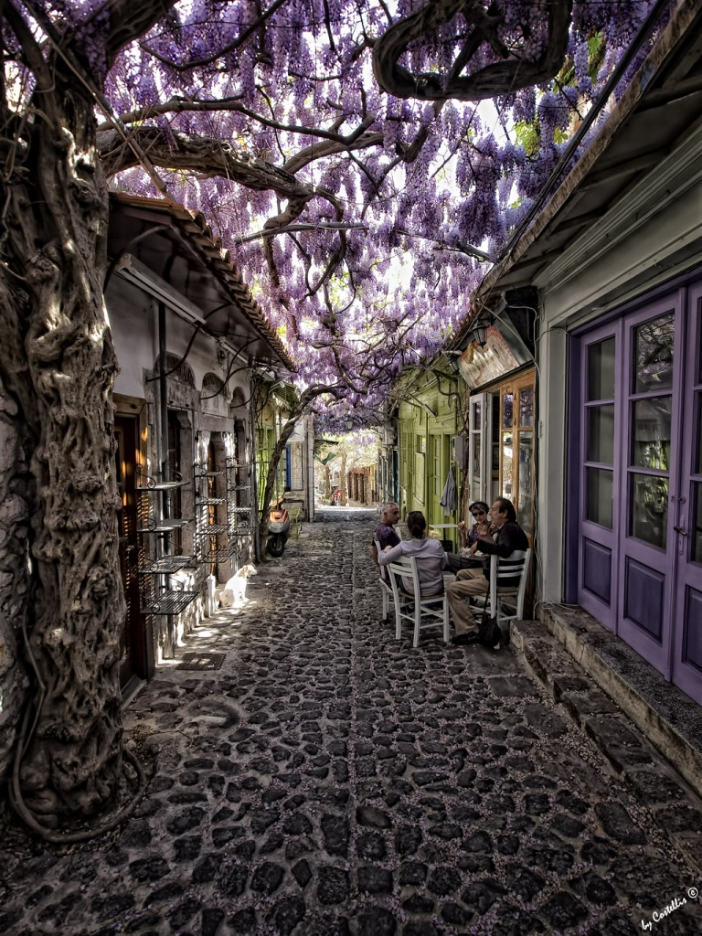 A cafe in Lesvos Island, Greece