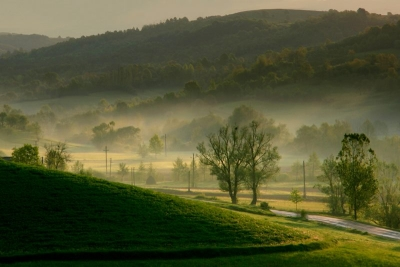 Morning mist, Romania