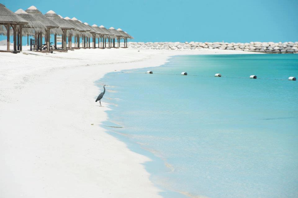 Al Maya Island, Abu Dhabi