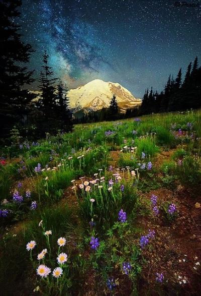 Mount Rainier, USA