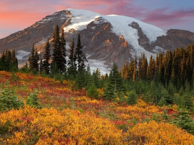 Fall in Paradise, Mount Rainier National Park