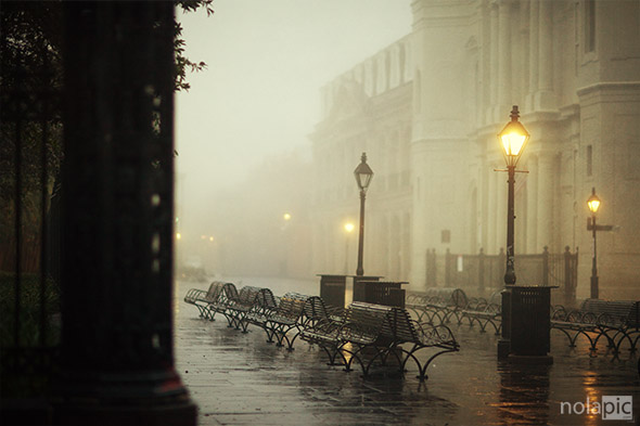 Foggy Day, New Orleans, Louisiana