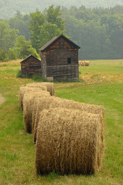 Hay bales and old barns, Massachusetts