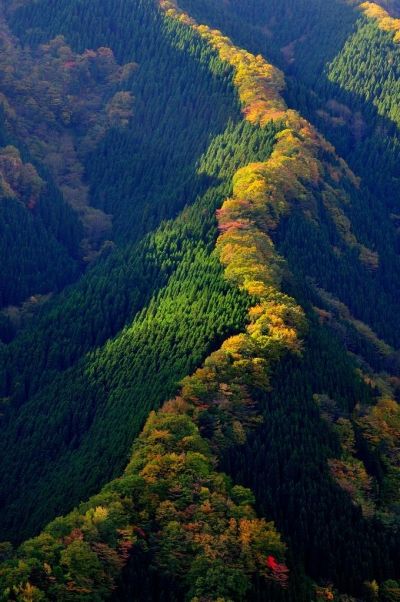 Namego Valley, Tenkawa Mountain, Japan