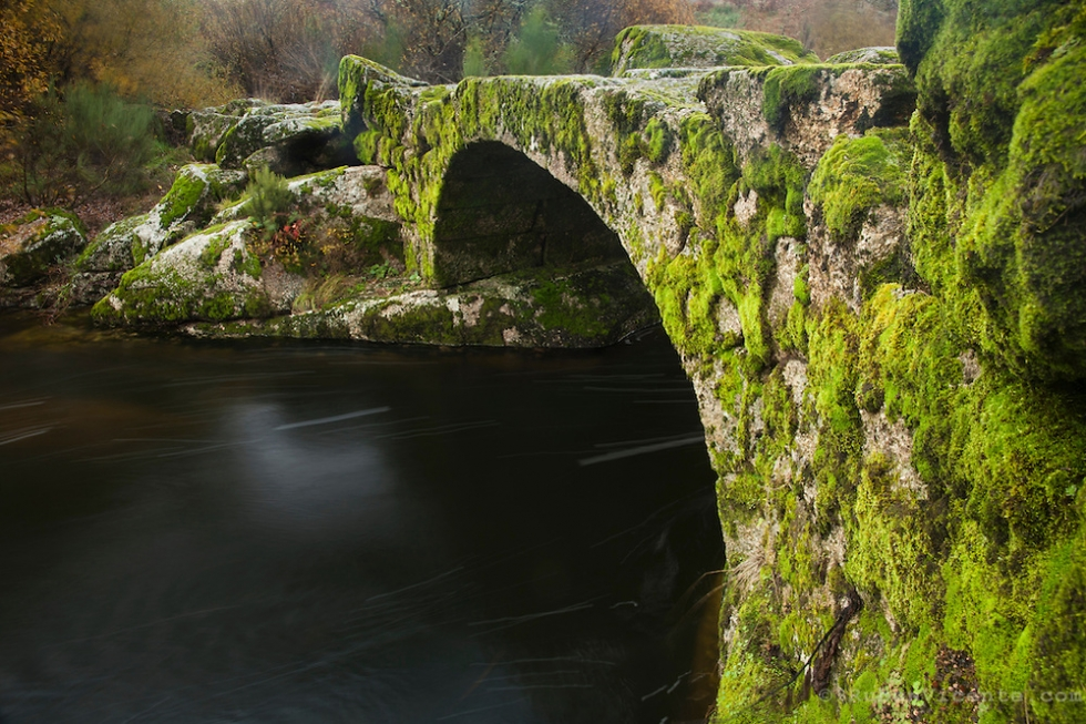 Roman stone bridge covered by green moss, Sezelhe, Portugal
