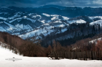 On the outskirts of Pestera village, near Bran, Romania