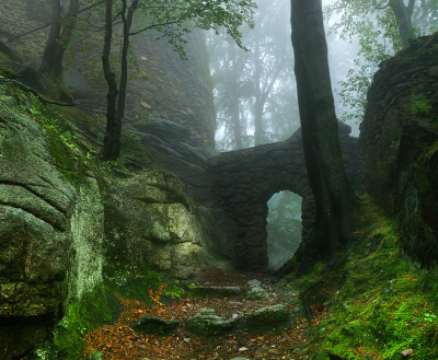 Castle Portal, Poland