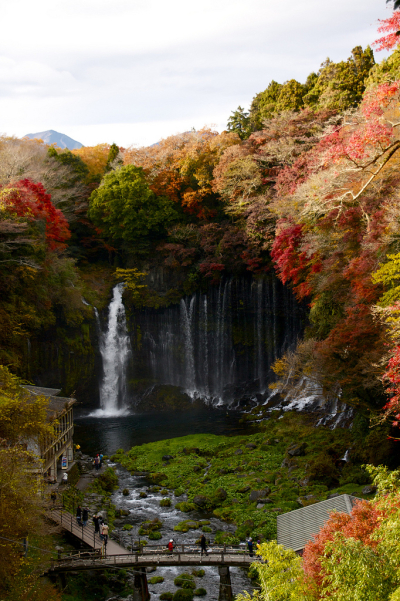 Autumn, Shiraito Falls, Fujinomiya, Japan
