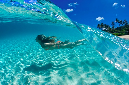Cleon France  city images : Swimming in a crystal clear blue wave in Bora Bora, French Polynesia.