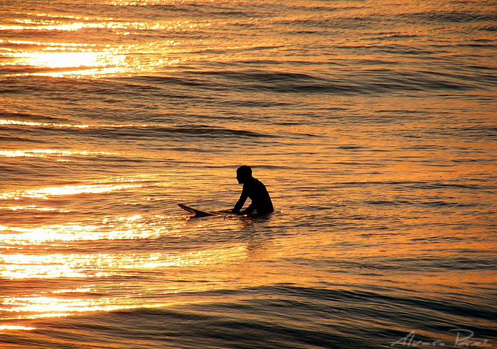 The sun surfer