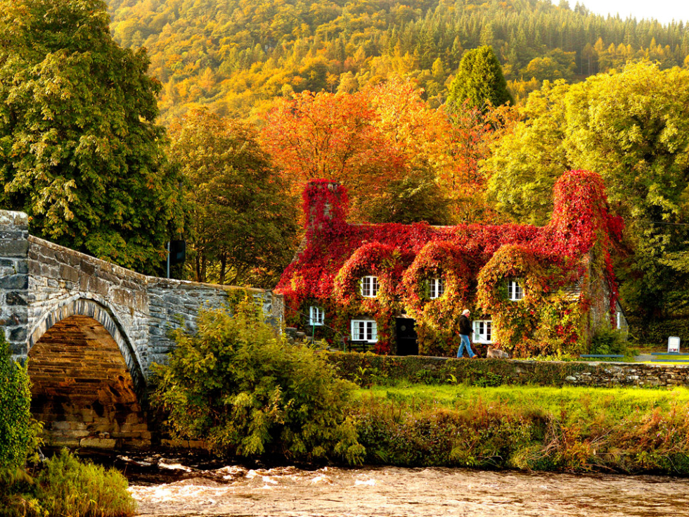 Autumn in Wales