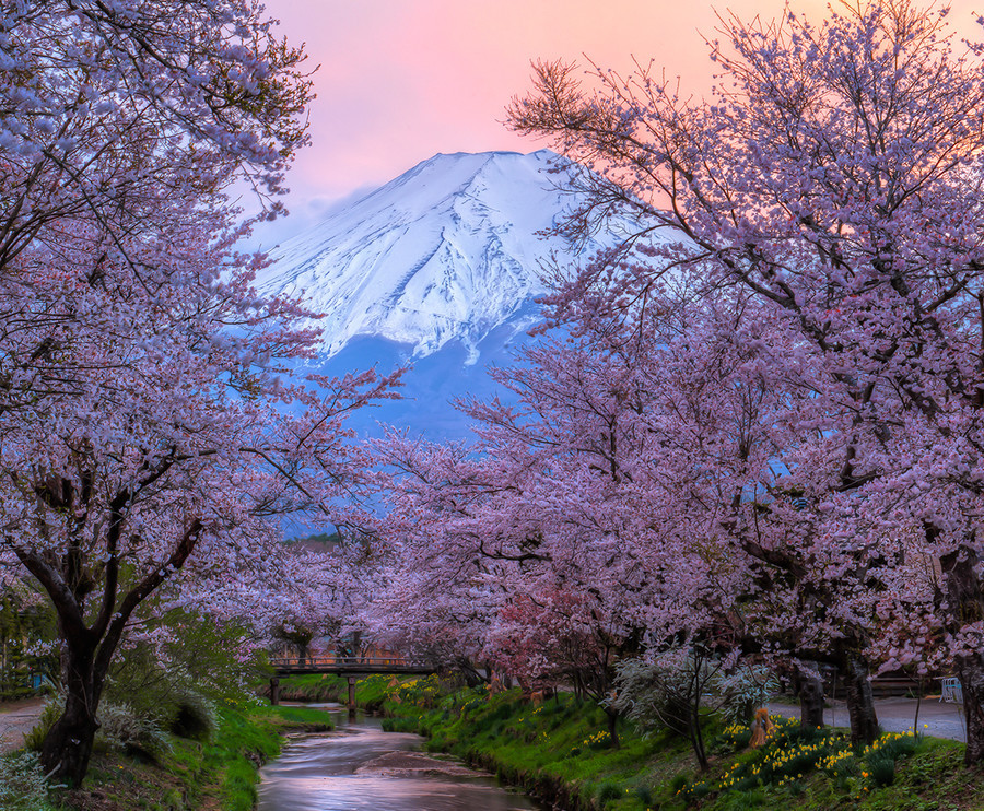 Beautiful sunset at Mount Fuji, Honshu Island, Japan
