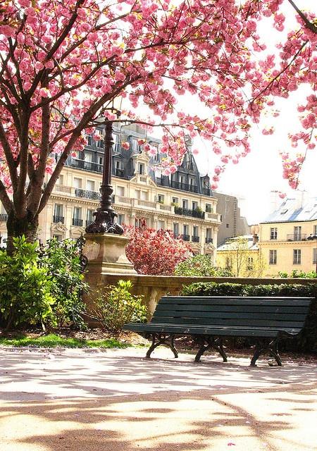 Springtime in Paris, France