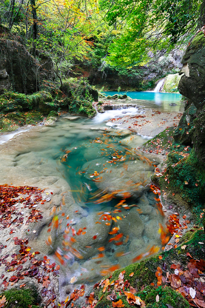 Urederra River, Basque Country, Spain