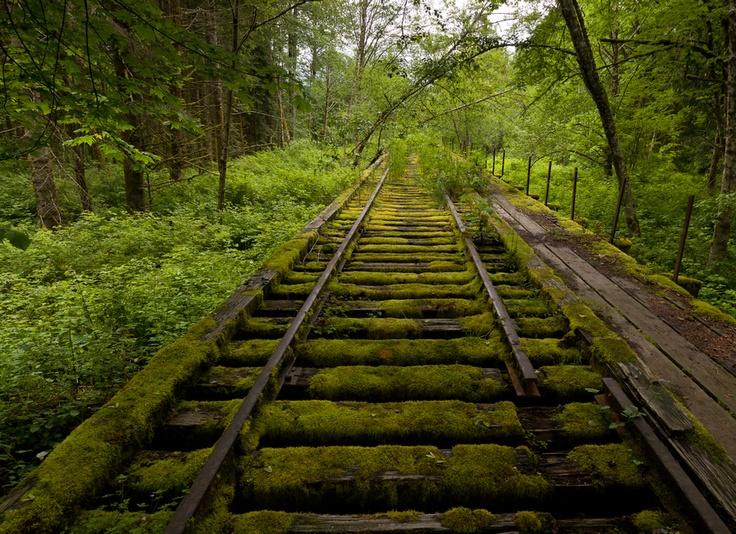 Abandoned Rail, Snoqualmie, Washington