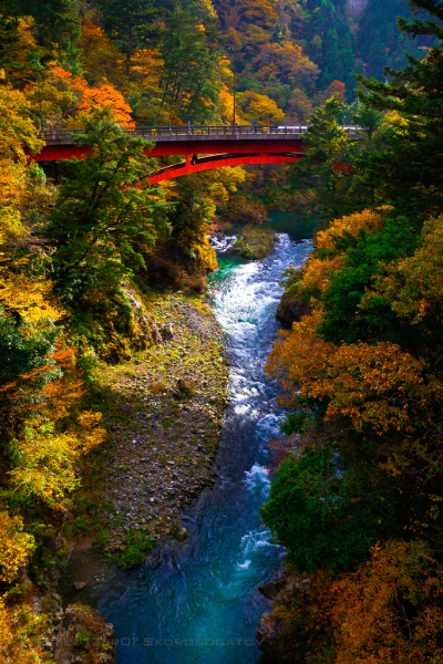 Autumn Bridge, Okutama, Japan