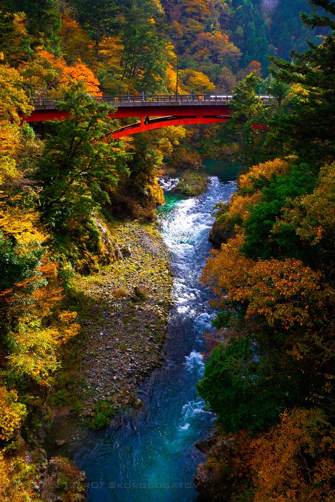 Autumn Bridge, Okutama, Japan