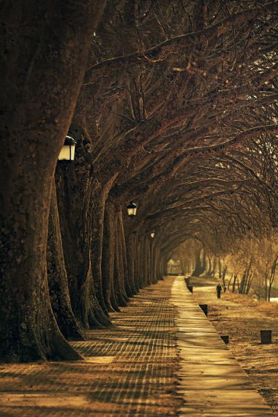 Lantern Walk, Ponte de Lima, Portugal