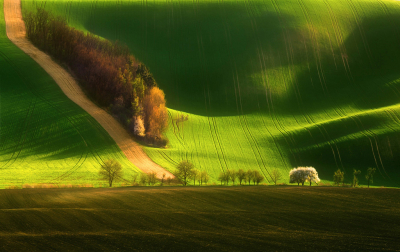 South Moravia, Czech Republic